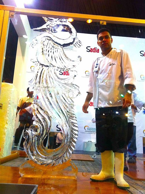 LC 14 times Gold Medalist for ice carving and food art_opt