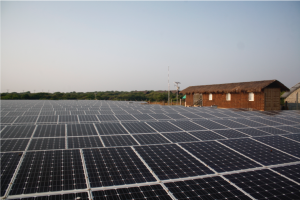 Solar-Panels-300x200