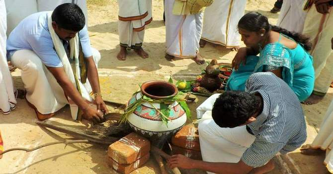 Preparations for Pongal festival