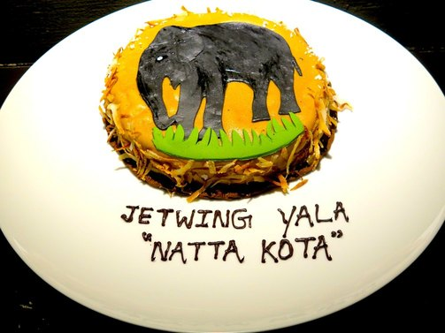 Jetwing Yala icon likes birthday cakes so we made one in his honour for being the first elephant to check into the hotel now a Utube celebrity