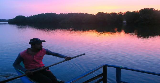 Sri Lanka's Pink Lagoon Safari